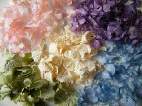 natural table confetti hydrangea