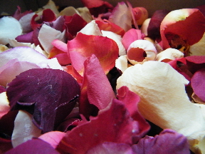 freeze dried rose petals mixed