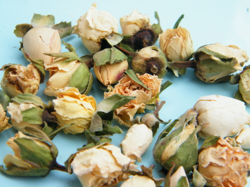 dried rose buds ivory